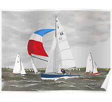 Sharpies - Waterloo Bay Poster