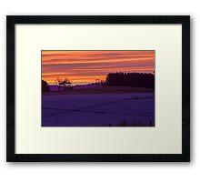 Sunset over Poppies Framed Print