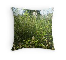 Autumn in the wilds of Footscray Throw Pillow