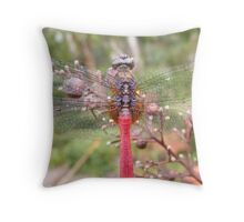 dragon fly wings Throw Pillow