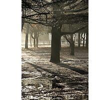 Zero Celsius Two Photographic Print