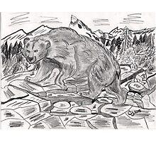 Bear Hunt Photographic Print