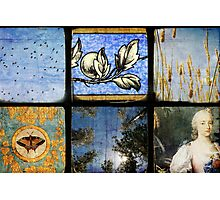 Six Scenes Blue Photographic Print
