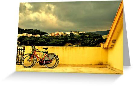 Bicycles n.1 by Silvia Ganora