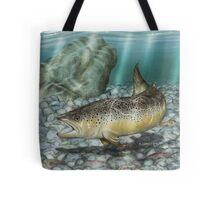 River Brown - Brown Trout Tote Bag