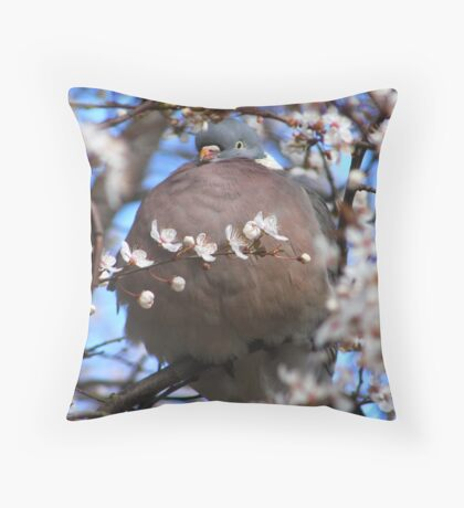 Cute puffed up wood pigeon Throw Pillow
