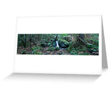 Margeurite Cascades Greeting Card