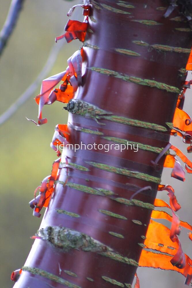 Peel Away by jdmphotography