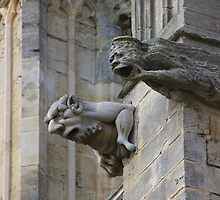 Gargoyles On Catherdral by jdmphotography