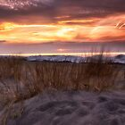 Sunset On the Grasses by Kathy Weaver