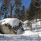 Lone Boulder by TerriRiver