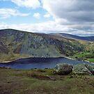 Mountain lake, Wicklow by Elaine Stevenson
