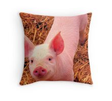 Curious little piggy Throw Pillow