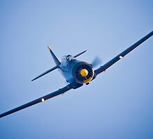He is comming in for a low pass by Flightcraze