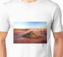 Lake Ballard IV (photo Dave Carter) Unisex T-Shirt