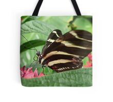 Zebra Longwing on Flowers Tote Bag