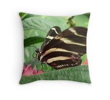 Zebra Longwing on Flowers Throw Pillow