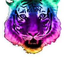 Rainbow Tiger by Mollie Barbé