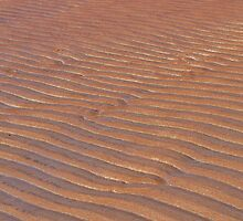 Patterns In The Sand by Joel Kempson