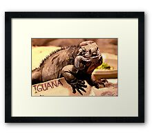 Iguana is my name Framed Print