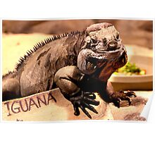 Iguana is my name Poster