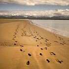 Footprints in the sand by Andrew Jackson