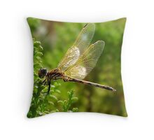 Dragon Alight Throw Pillow