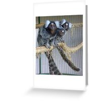 White Ear Marmoset Family Greeting Card