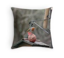 Mr Robin Throw Pillow