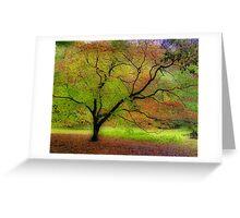 Westonbirt view Greeting Card