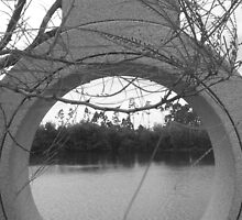 Circular View at Morikami by bethanylee