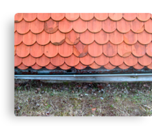ROOF AND NO HOUSE Metal Print