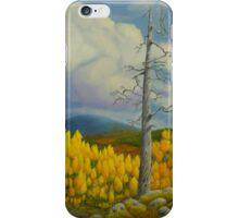 Autumn in Lapland iPhone Case/Skin