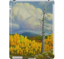 Autumn in Lapland iPad Case/Skin