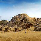 Desert Scene by CinB