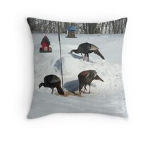 Wild turkeys  Throw Pillow