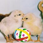 MY EASTER BABIES by rue2