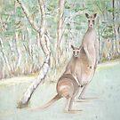 Australian Kangaroos by gunnelau