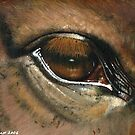CHESTNUT MARE - EYE TO THE SOUL by Leigh Karchner