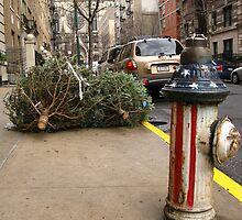 Last Christmas by Paul Ryan