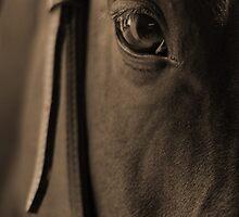 Tender Look in Sepia by Johanne Brunet