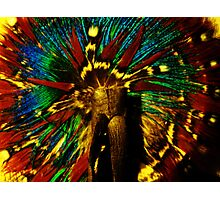 Feather Hair Tie  Photographic Print