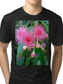 Pink flowering gum blossom Tri-blend T-Shirt