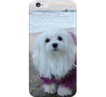 Snowdrop the Maltese - The Beach in Winter  iPhone Case/Skin