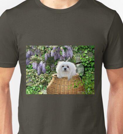Snowdrop the Maltese - Hide & Seek Unisex T-Shirt
