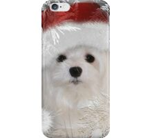 Snowdrop the Maltese - A Frosty Morning ! iPhone Case/Skin