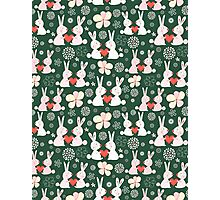 pattern of rabbit lovers Photographic Print