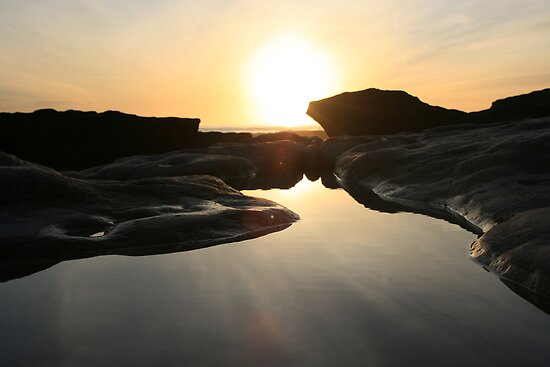 Rockpool by Mike Butchart