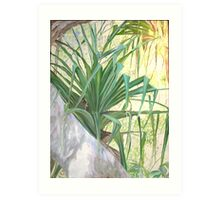Pandanus Palm Art Print