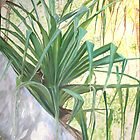 Pandanus Palm by gunnelau